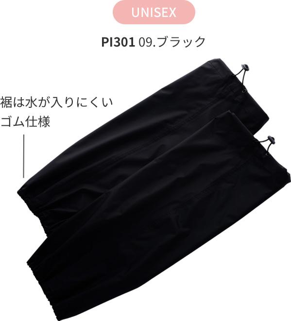 PI301 09.ブラック
